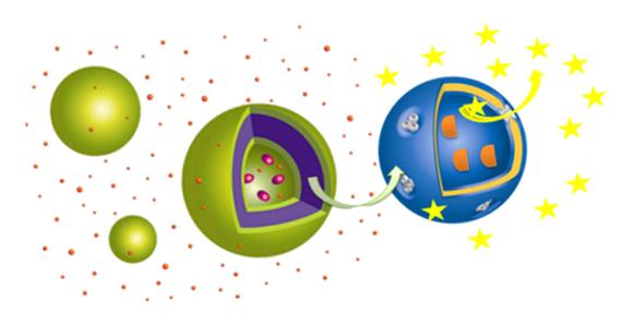 Cascade reactions in nanoreactors acting in tandem.