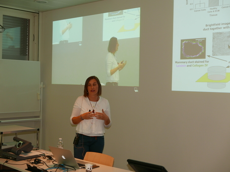 Marija Plodinec (Lim-Group) presenting her research at the Lunch Meeting on 19 August 2015.