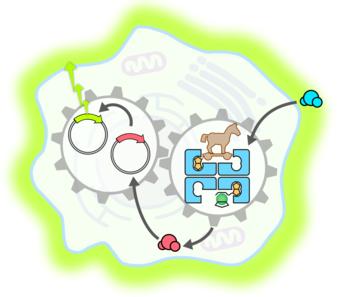 molecular systems engineering